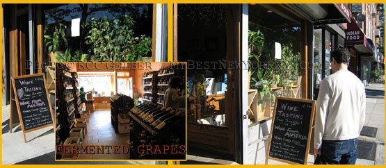 Fermented Grapes Wine Store in Prospect Heights