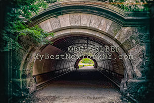 Prospect Park Tunnel Underpass